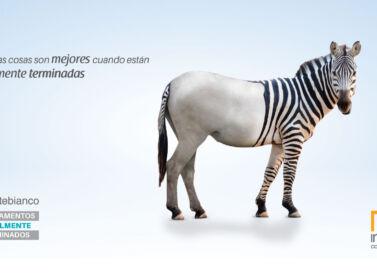 Pauta publicitaria para Inacar, diseñada por Galanés Agencia de Comunicación.